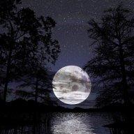 Luna_